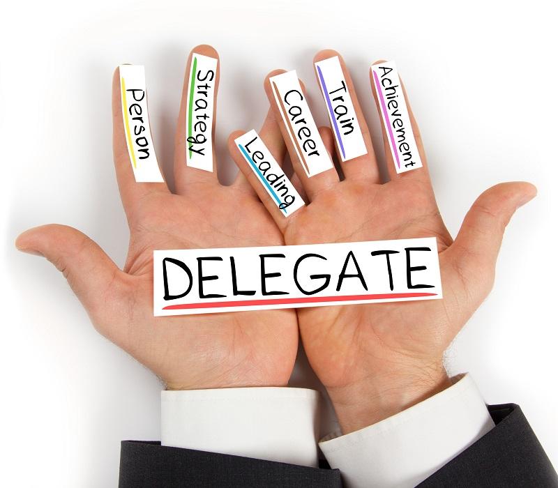 Strategic Practice Solutions Delegation